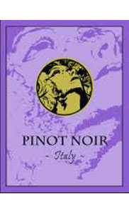 Angelini Pinot Noir 750ml